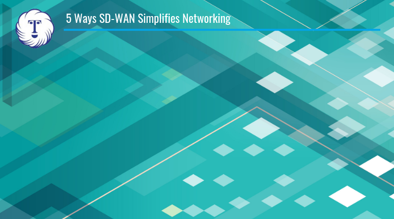 sd wan networking